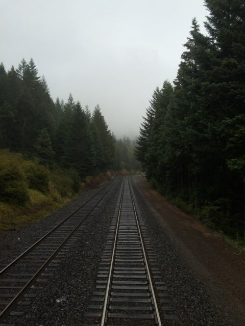 Willamette National Forest, Oakridge