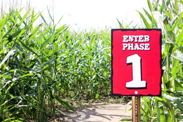 South Texas Maize Hondo Phase 1