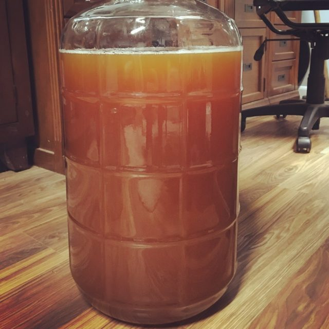 The Plinian Legacy in the secondary fermenter
